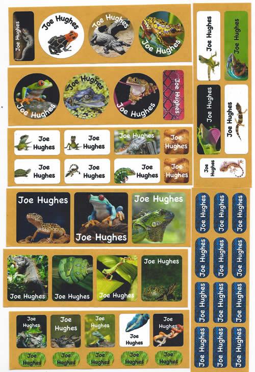 Reptiles personalised name labels