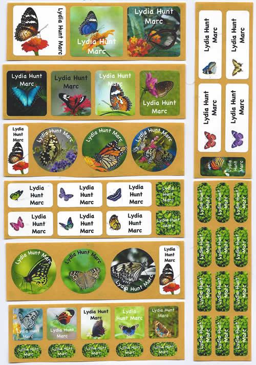 butterflies-set-500x712